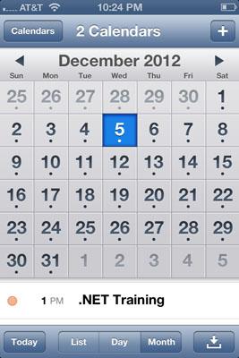 iOS Month Calendar
